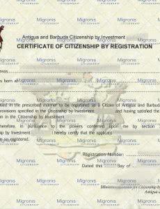 Antigua Certificate of Registration_Migronis