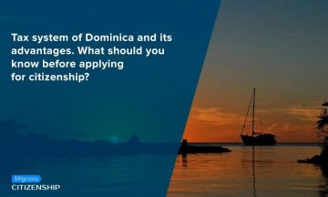 Tax system of Dominica and its advantages. What should you know before applying for citizenship?